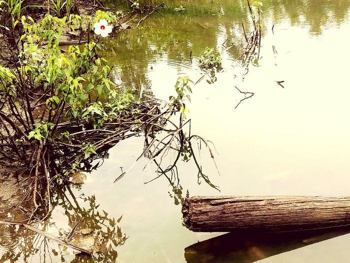 Atchison ks hidden gems river road