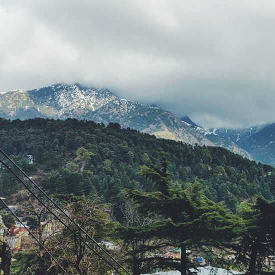 Who could live these mountains (McLeod Ganj, Himachal Pradesh) | Vscocam India Dharamshala Mountains |