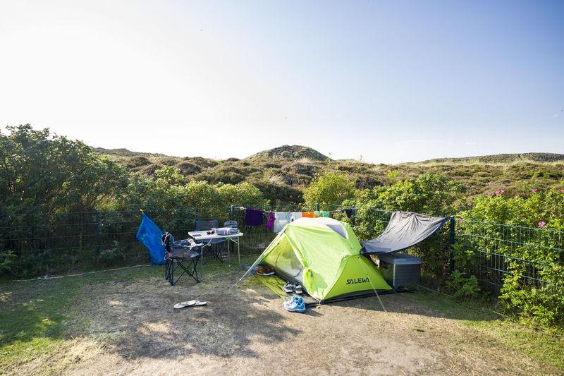 Plant Sky Tent