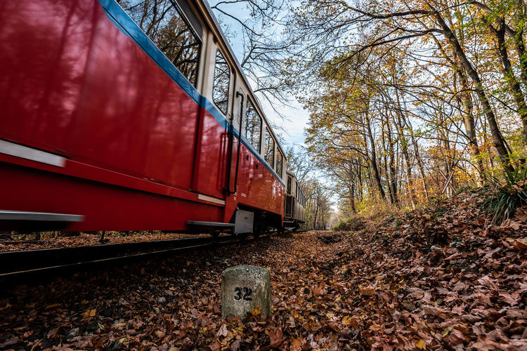 Nature Train Trees Tree Autumn Red Day Outdoors Forest Track Transportation Railway Public Transportation Plant Rail Road Railroad Track No People Rail Transportation Land Vehicle Mode Of Transportation Train - Vehicle Land Travel Leaf Fall