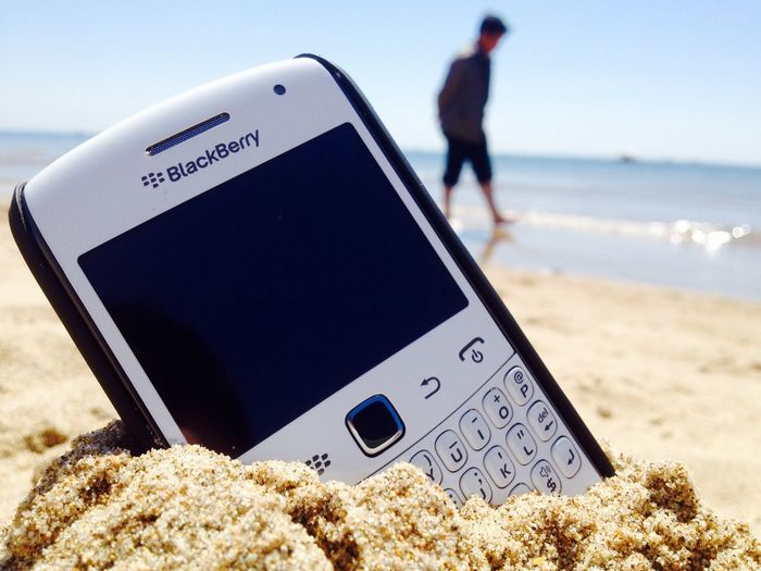 I love blackberry Sunshine Sea