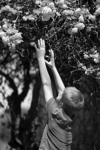Boy reaching towards flowers in park
