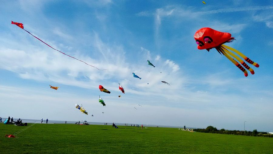 Flying Grass Mid-air Leisure Activity Kite - Toy Sky Kite Day Fun Nature Multi Colored Red Lawn Blue Weekend Activities Adventure Green Color Outdoors Paragliding Grassy