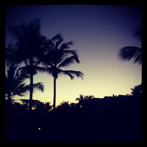 Sunsetinthecarribean Omgitssohot Dreamslaromana /honeymooning