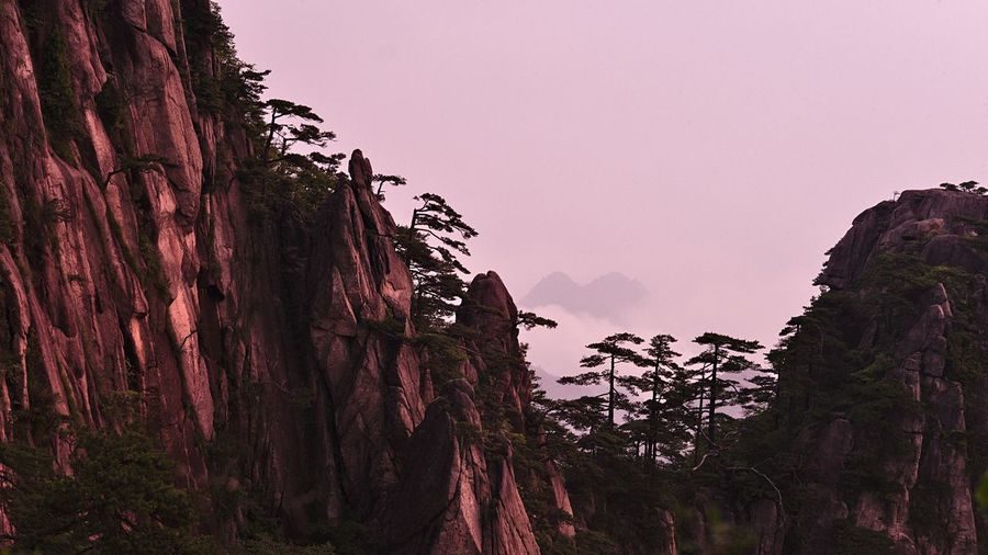 sunrise at Mount huangshan Beauty In Nature Clear Sky Cliff Day Landscape Low Angle View Mountain Nature No People Outdoors Pinus Hwangshanensis Rock - Object Rock Formation Scenics Sky Steep Tranquil Scene Tranquility Tree