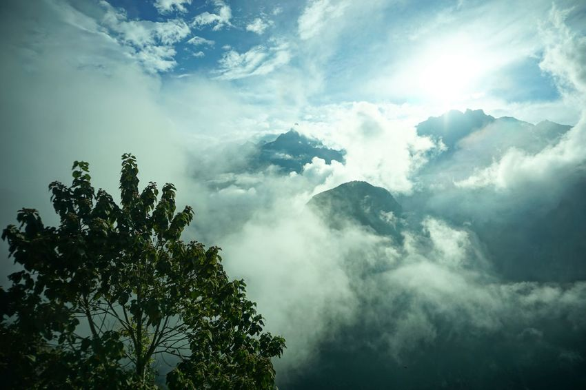 Sommergefühle Cloud Nature Sunbeam Sky Outdoors Scenics Tree Beauty In Nature Tranquility No People Low Angle View Day Cloud - Sky Sunlight Tranquil Scene Growth Sony A6000 Eye4photography  Perspectives On Nature