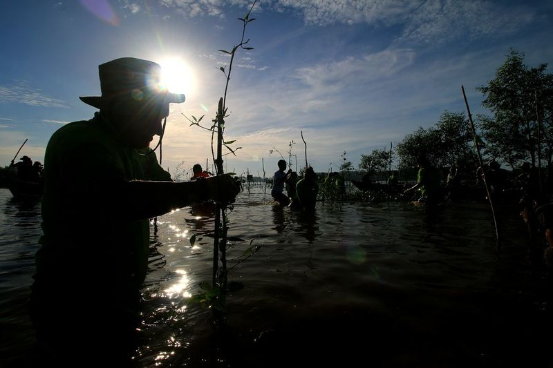 In a water Capture Tomorrow Water Silhouette Men Occupation Sea Full Length Standing Sky Low Tide