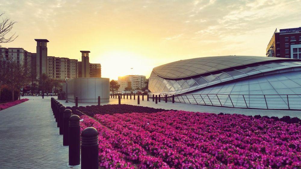 Good morning! Rise and shine! Sunrise ColdMorning Dubai Startoftheday Love Eye4photography  Streetphotography