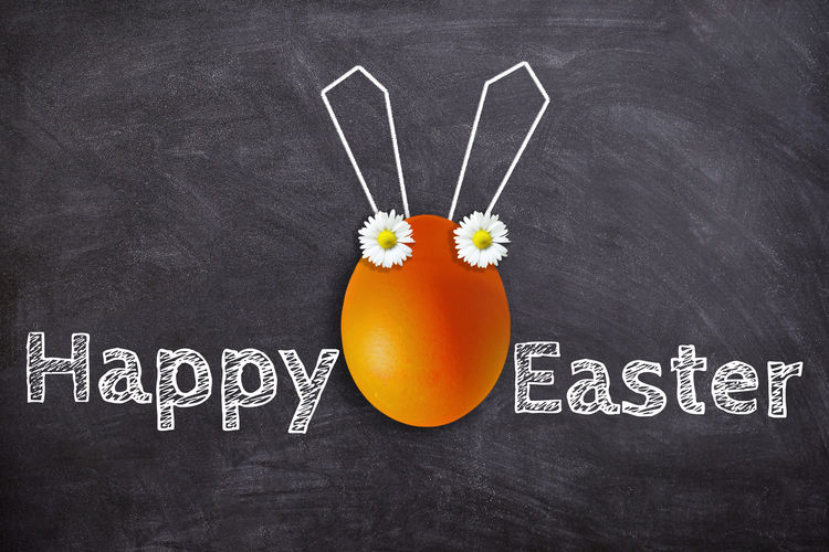 Happy easter Blackboard  Board Easter Happy Easter Egg Bunny  Funny Card Greetings Bunny Ears  Text Flower Happy Greeting Card  School Education Orange Color Easter Egg Daisy Easter Cards Spring Tradition