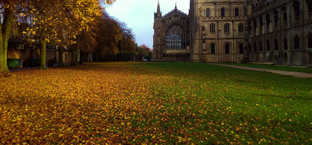 Architecture Autumn Beauty In Nature City Ely Cathedral History Leaf Leaf Fall Nature Outdoors Travel Destinations Autumn Colours Autumn Leafs