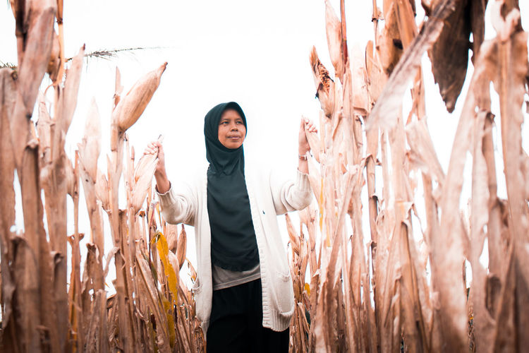 Woman standing amidst corn crops on field