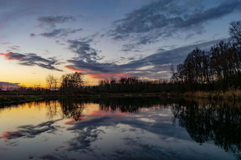 Sunset reflection. Tree Water Sunset Lake Autumn Multi Colored Reflection Sky Cloud - Sky Landscape Reflection Lake Dramatic Sky Atmospheric Mood Romantic Sky Dramatic Landscape