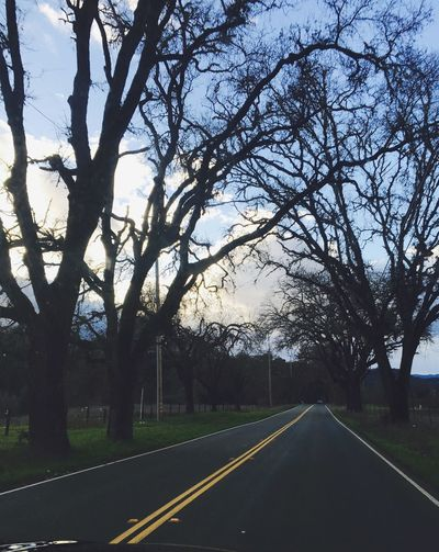 The Longest Mile Life Is A Highway Road Less Travelled Nor Cal Northern California Hopland Californial Winter Trees EyeEm EyeEm Nature Lover