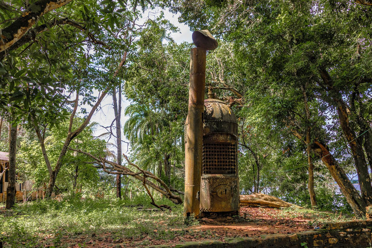 Ruins of Paricatuba - Furnace to Generate Energy. Amazon Amazonas Green Color Outdoors Paricatuba Ruins Tree