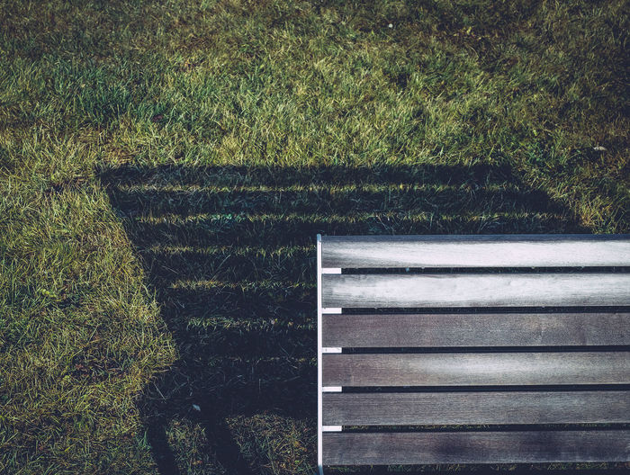 Shadow Of Park Bench On Grassy Field