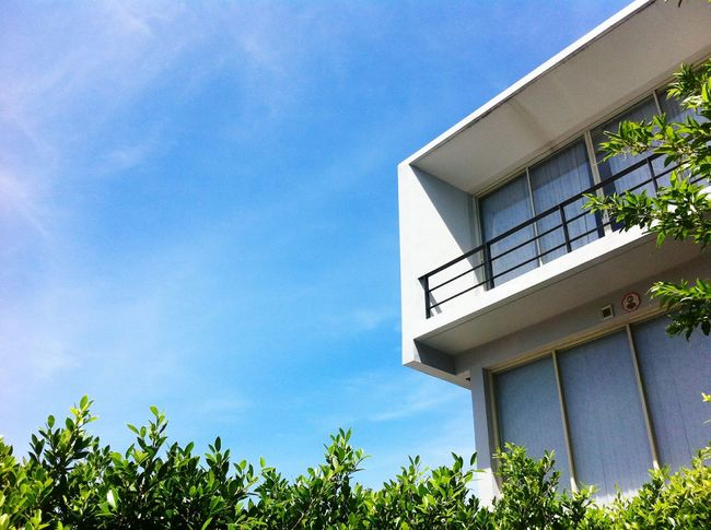 modern architecture in garden NatureLeaf Nature Leaves Tree Plant Modern Modern Architecture Architecture House Modern Home Mobilestock Home Modern House Building Exterior Garden Sky Outdoors Clouds And Sky Sky And Clouds
