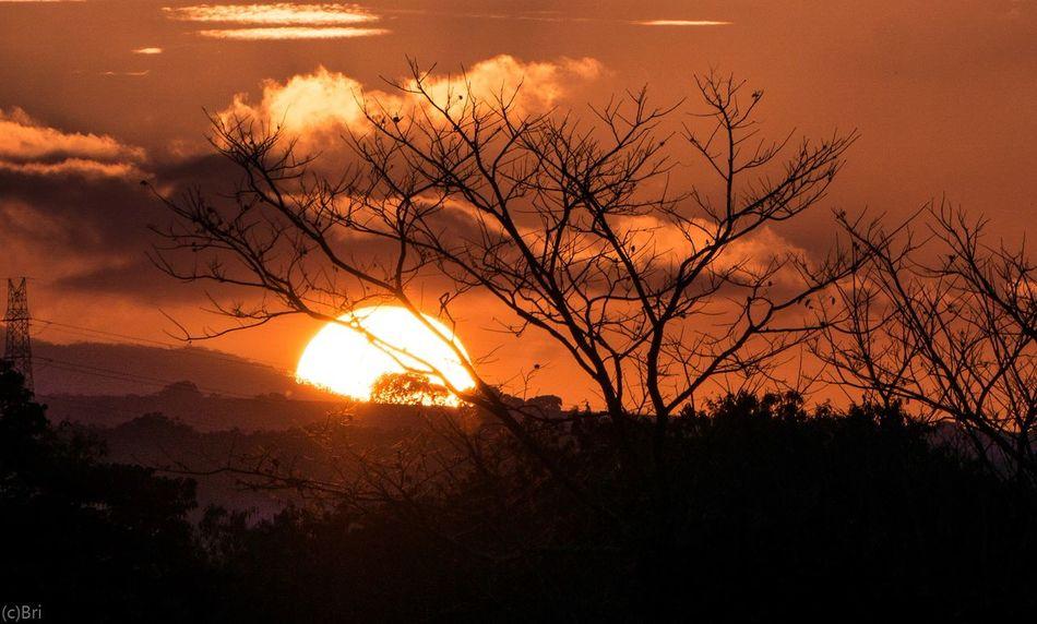Sunset horizon Sunset Bukidnon Golden Hour EyeEm Selects Tree Sun Nature Silhouette Sunlight Beauty In Nature Beauty Scenics Landscape Outdoors