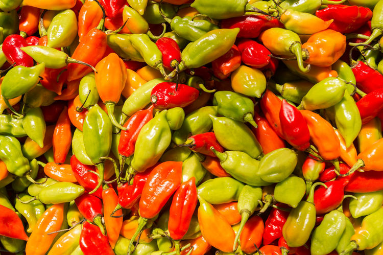 Many habanero chili peppers at the market in Martinique Abundance Backgrounds Close-up Day Food Food And Drink Freshness Full Frame Green Color Habanero Pepper Habanero Peppers Healthy Eating Indoors  Market Stall No People Pepper Red Vegetable