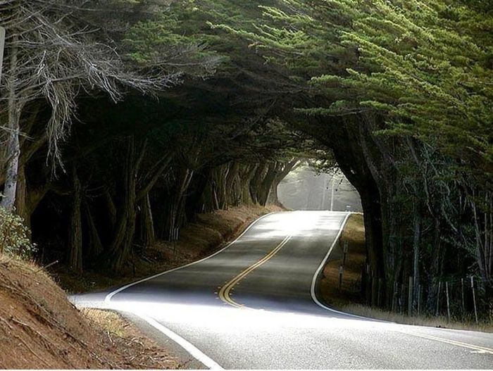 Mistery Road
