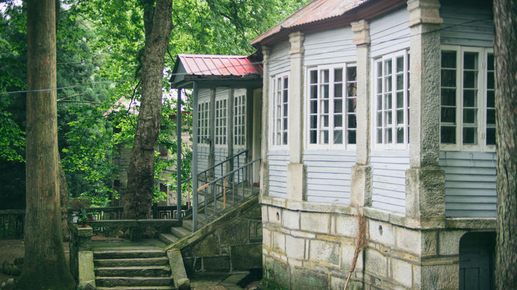 Architecture Building Building Exterior Built Structure Documentary Forest Green Growth Lushan Nature Outdoors Photograph Traveling Tree Villa