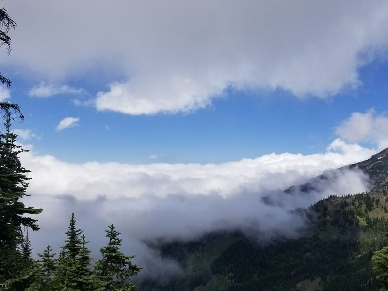 Mountain Cloud - Sky Nature Forest Tree Outdoors Sky Travel Day Mountain Peak Beauty In Nature Landscape Vacations Water Power In Nature Mountain Range Hurricane Ridge At The Top