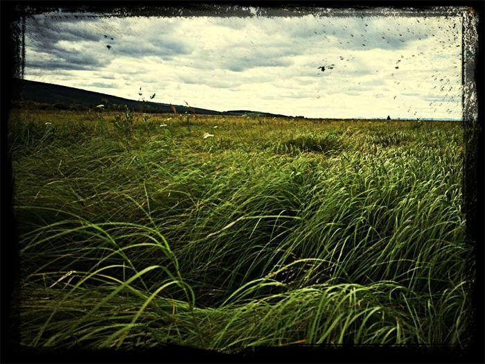 Бесконечная красота забайкальских степей Russia Hello World Relaxing First Eyeem Photo