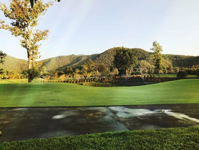 EyeEm Best Shots EyeEmNewHere Landscape Golf Grass Golf Course Green Color Green - Golf Course Tree No People Outdoors Nature Sky Day Beauty In Nature Palm Tree Nature Tranquility EyeEm Nature Lover Freshness Green Color Mountain