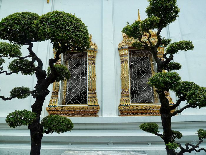 Low angle view of trees against wat pho