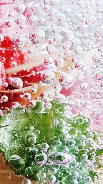 Bubbles Bubble Bubble Collection Soda Macro Macro Beauty Macro Photography Detail Close-up Close Up Closeup Closeupshot Close Up Photography Water Bubble Fine Art Photography Maximum Closeness