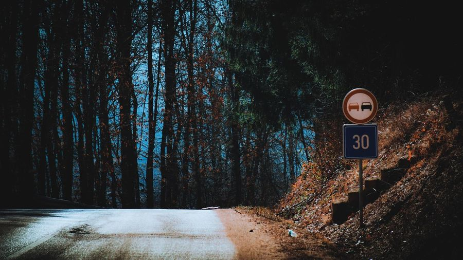 Road sign by trees in forest