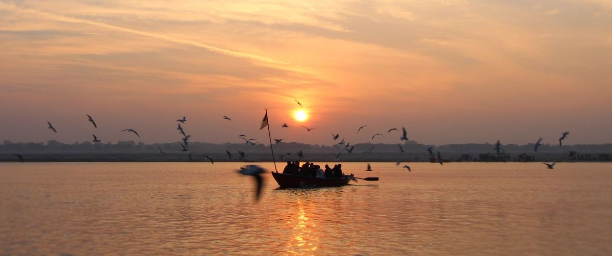 Silhouette Birds Flying Over People On Boat In Sea Against Sky During Sunset