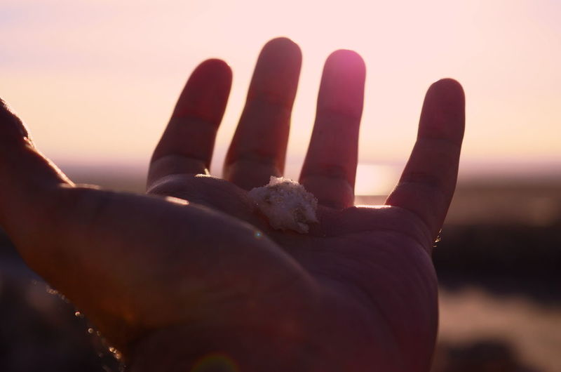 Close-up of human hand against sky during sunset