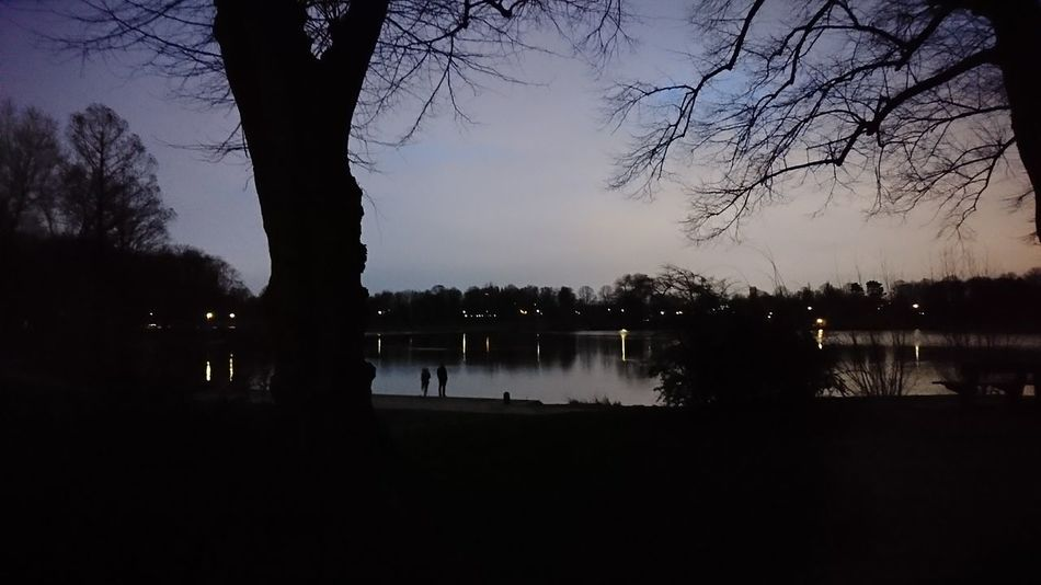 Stadtparksee. · Hamburg Germany 040 Hh Barmbek Stadtparksee Stadtpark Lake Trees Framed By Trees Plants Silhouette Light And Shadow Reflections Dusk Atmosphere Calmness Beauty Beauty In Nature