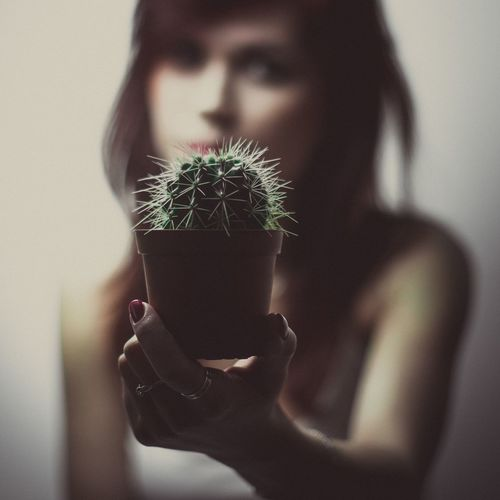 Woman Holding Cactus At Home