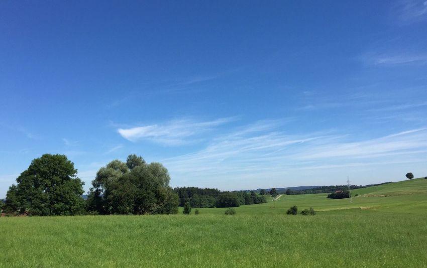 Summer... Taking Photos The Purist (no Edit, No Filter) Summer Time  Allgäu
