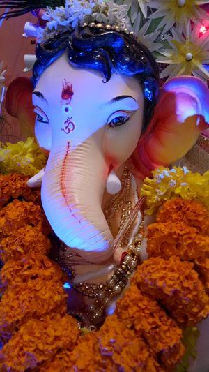 Ganesh God Ganapatibappamorya