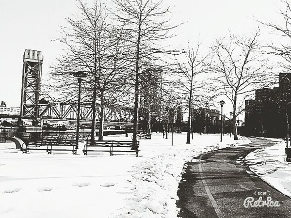 Snow has scared people away... An empty park is waiting for visitors while covered in snow Snow Walking Around Nature Photography Naked Trees