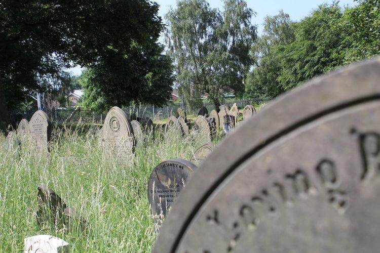 Graveyard Over