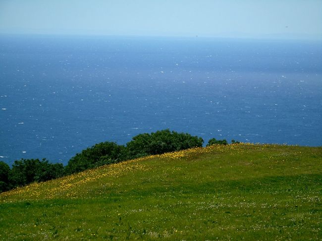 Landscape Sky Cloud - Sky No People Nature Tree Blue Beauty In Nature Outdoors Grass Freshness Clifftop Travel Destinations Weymouth Dorset