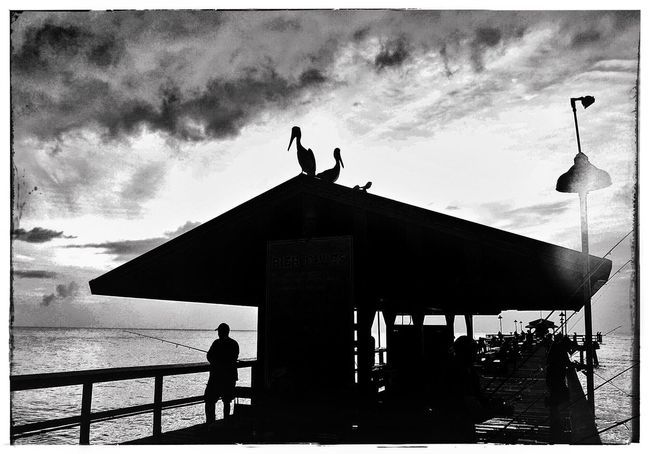 Waiting for fish Check This Out Blackandwhite Pier Fishing