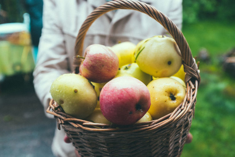Apple - Fruit Basket Close-up Container Day Focus On Foreground Food Food And Drink Freshness Fruit Hand Healthy Eating Holding Human Body Part Incidental People One Person Outdoors Real People Ripe Wellbeing Wicker