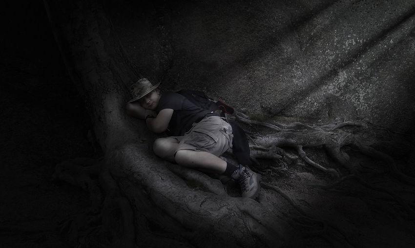 High angle view of man sleeping on tree trunk