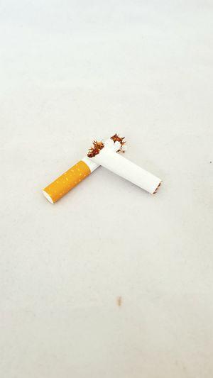 EyeEm Selects Studio Shot Day White Background Cigarette  Broken Broken Cigarettes No Smoking NoSmokingPlease Smoking Smoke Health EyeEmNewHere Broken Cigarrettes