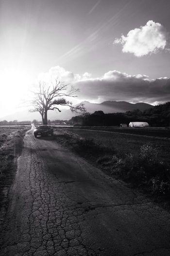 Black And White Landscape_Collection EyeEm Best Shots - Black + White Sunset