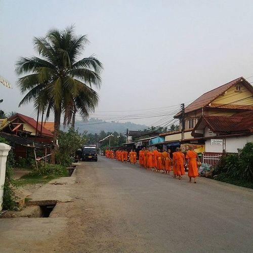 Morning ALMS for the Monks of Luangprabang Laos . Travel Everydayasia Dailylife Peoplewatching Seeninthecity Streetphotography Cityscene Buddhism Wanderlust Instatraveling Instatravel Travelgram Travelingourplanet