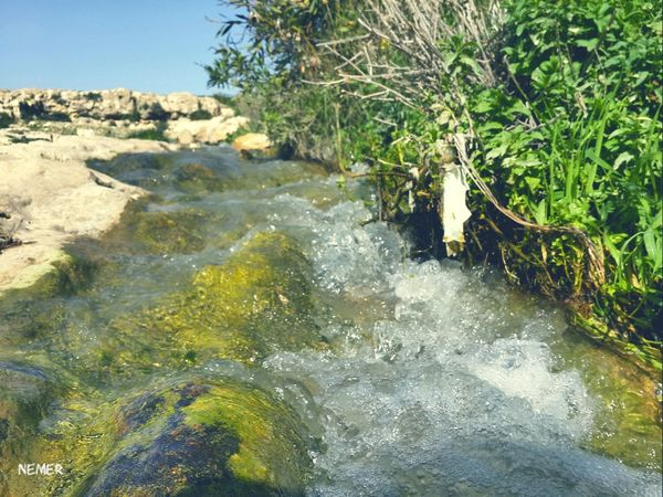 Water Motion Flowing Flowing Water Plant Environment Nature River Growth Splashing Waterfront Outdoors Beauty In Nature Non-urban Scene Power In Nature Nature Photography Amman Jordan First Eyeem Photo Vacations Landscape Sky Spring Eyem Nature Green