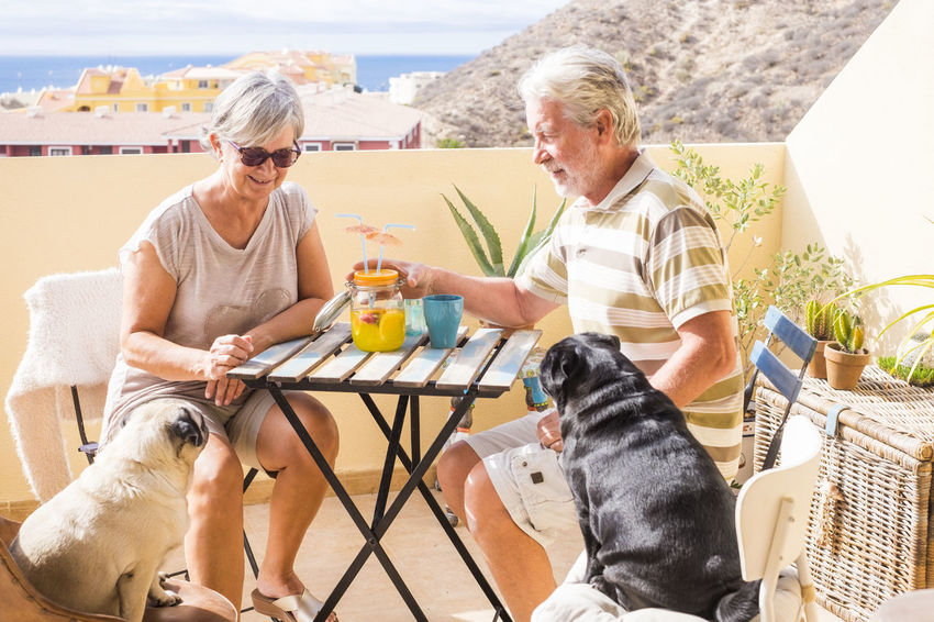 senior couple with two carlino dogs sitting on terrace sea and mountain view drinking Terrace Carlino Pug Couple Casual Clothing Day Dog Domestic Animals Drink Friendship Gray Hair Happiness Outdoors Pets Relaxation Retirement Sea View Senior Couple Sitting Smiling Togetherness Two People Vacations
