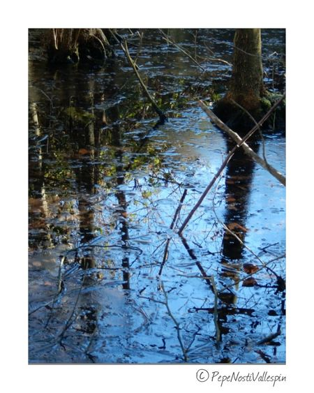 River Rionora Poladesiero Winter Reflection Water No People Nature Outdoor Photography Naturephotography Beauty In Nature