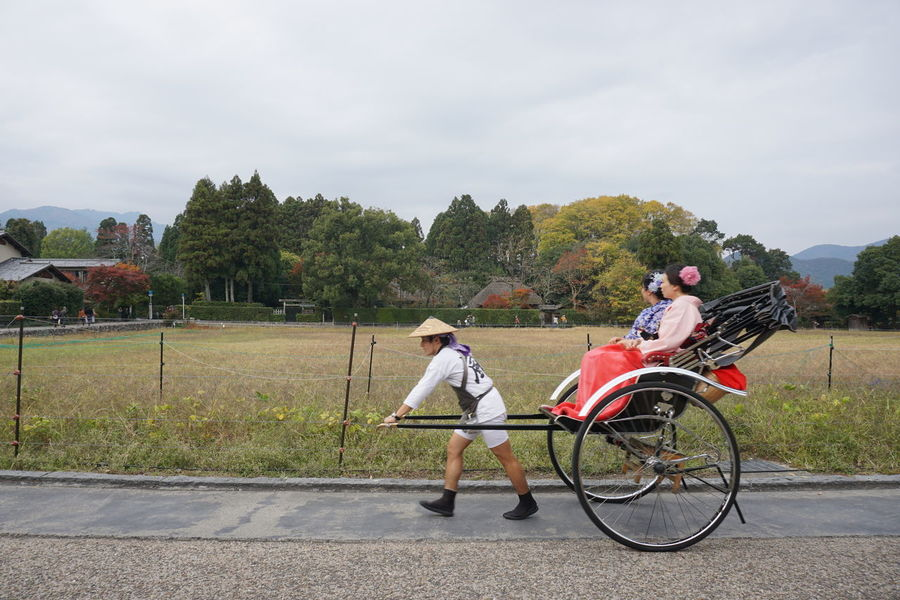 rickshaw ride in Arashiyama. Kyoto Bicycle Casual Clothing Competition Countryside Cycle Cycling Day Full Length Holding Kyoto, Japan Land Vehicle Leisure Activity Men Mode Of Transport Motion On The Move Outdoors Rickshaw Road Side View The Week On EyeEm Transportation Tree Young Adult My Year My View