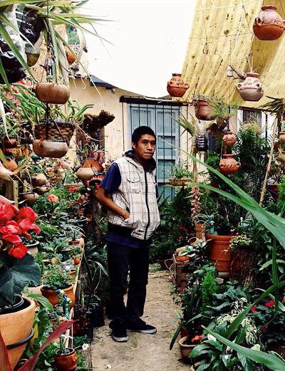 A boy in a garden shop, Chiapas, Mexico Portrait Boy Mexico Chiapas, México SanCristobalDeLasCasas Garden EyeEm Diversity